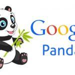 google-panda Algorithm